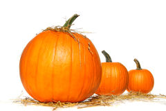 Pumpkins with straw on white Stock Photography