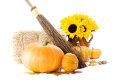 Pumpkins and sunflowers Royalty Free Stock Photography