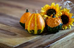 Pumpkins and Sunflowers Decoration on a table stock image