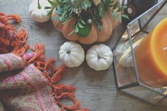 Pumpkin on the wooden table. Atmospheric place. Natural. Background. Pumpkins on the table.  Flower composition. Home decoration. Atmospheric photo. Cozy home Stock Photos
