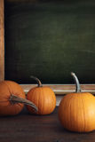 Pumpkins on table with menu board Stock Image
