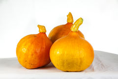 Pumpkins on a table. Three pumpkins on a white table Stock Images