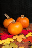 Pumpkins Table top setting Stock Images