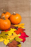 Pumpkins Table top setting Royalty Free Stock Photography