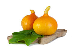 Pumpkins on a table. Two pumpkins on a wooden plate on a table Stock Photos