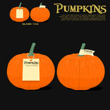 Pumpkins with tag Stock Images