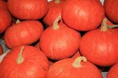 Pumpkins, Thailand. Stock Photo