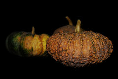 Pumpkins. Three pumpkins isolated on black Stock Image