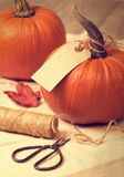 Pumpkins. Tied with rustic label for thanksgiving table setting stock image