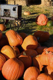 Pumpkins and Tractor Stock Photography