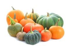 Pumpkins Varieties Stock Images