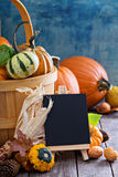 Pumpkins and variety of squash Stock Photography