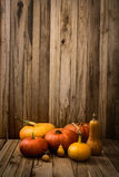 Pumpkins variety Royalty Free Stock Images