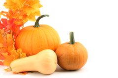 Pumpkins. Various pumpkins and colorful leaves on white background royalty free stock photography