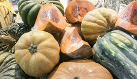 Pumpkins. Of various kinds ready for sale Stock Images