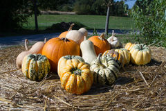 Pumpkins. Various pumpkins on a straw bale Royalty Free Stock Photo