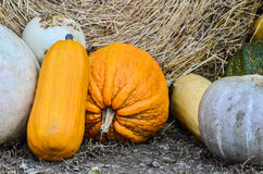 Pumpkins and various vegetables, on bales of straw. Fair pumpkins and various vegetables, on bales of straw in market open air royalty free stock images