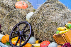 Pumpkins and various vegetables, on bales of straw Royalty Free Stock Images