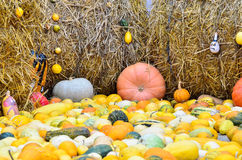 Pumpkins and various vegetables, on bales of straw Stock Photos