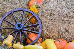 Pumpkins and various vegetables, on bales of straw Stock Photo