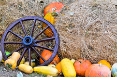 Pumpkins and various vegetables, on bales of straw Royalty Free Stock Photos