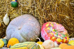 Pumpkins and various vegetables, on bales of straw Royalty Free Stock Photography