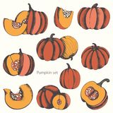 Pumpkins. Vector set of hand drawn illustrations for design Stock Images