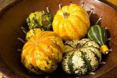 Pumpkins vegetable background Stock Images