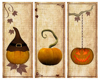Pumpkins vintage collection Royalty Free Stock Photos