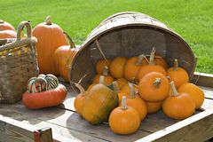 Pumpkins on Wagon Stock Photography