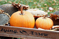 Pumpkins in Wagon Royalty Free Stock Photography