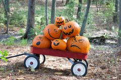 Pumpkins in a wagon stock photography