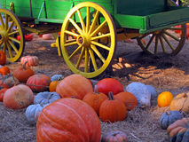 Pumpkins with Wagon Royalty Free Stock Images