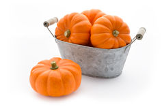 Pumpkins in a washbowl Stock Photography