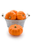 Pumpkins in a washbowl Stock Images