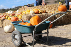 Pumpkins on a wheel cart Royalty Free Stock Images