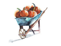 Pumpkins on a wheelbarrow watercolor painting isolated on white. Pumpkins on a wheelbarrow watercolor painting Royalty Free Stock Images