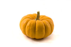 Pumpkins on White Stock Images