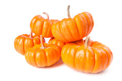 Pumpkins on a white background Stock Images