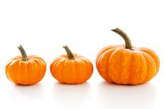 Pumpkins  on white background Royalty Free Stock Images