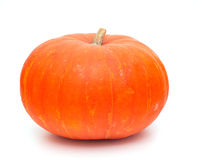 Pumpkins  on white Royalty Free Stock Images