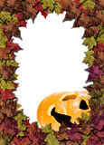 Pumpkins on white background with fall leaves Stock Photo