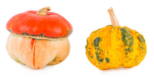 Pumpkins on a white background Royalty Free Stock Photo