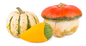 Pumpkins on a white background Royalty Free Stock Images