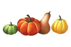 Pumpkins on a white background. Sketch done in alcohol markets. You can use for greeting cards, posters and design projects Stock Photography
