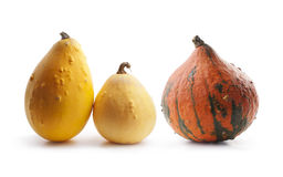 Pumpkins on a white background Royalty Free Stock Photography