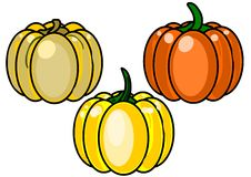 3 pumpkins on a white background. Three pumpkins for halloween isolated on white background Stock Image