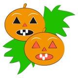 Pumpkins on white background. Vector illustration Stock Images