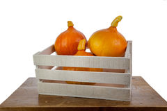 Pumpkins in a white box. On a wooden table Stock Images