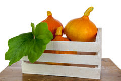 Pumpkins in a white box. On a wooden table Royalty Free Stock Image